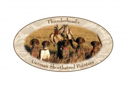 Thunderhead GSP's