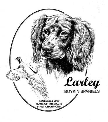 Larley Boykin Spaniels