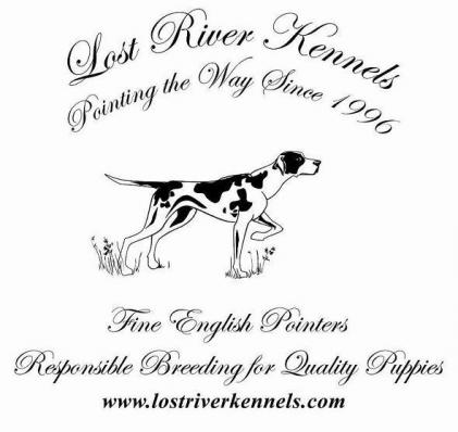 Lost River Kennels
