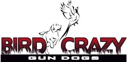 Bird Crazy Gun Dogs