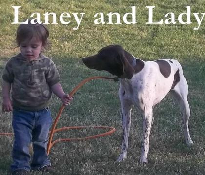 Simons Hunting Dogs