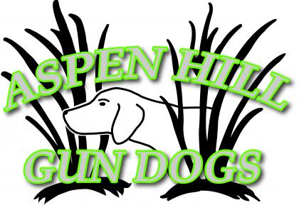 Aspen Hill Gundogs