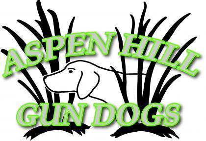 Aspen Hill Gun Dogs