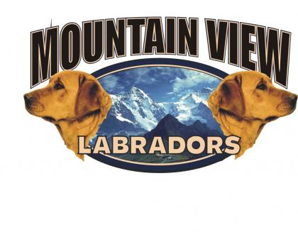 MOUNTAIN VIEW LABS
