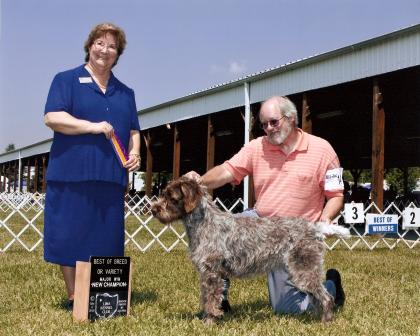 Timoria Show Kennel