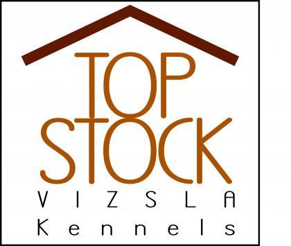 TopStock Vizsla Kennels