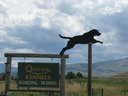 Querencia Lodge and Kennels