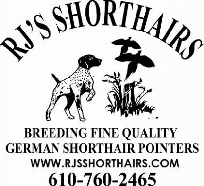 RJ'S Shorthairs
