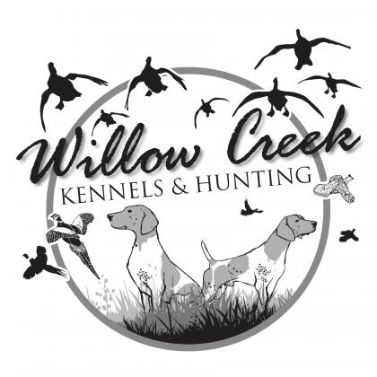 Willow Creek Kennels and Hunting