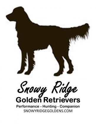 Snowy Ridge Goldens