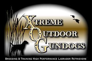 Xtreme Gundogs