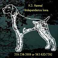 K S Kennel