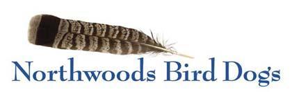 Northwoods Bird Dogs