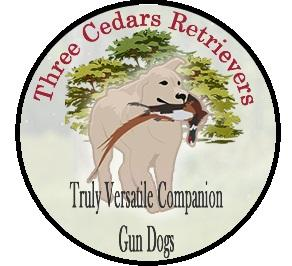 3 Cedars Retrievers