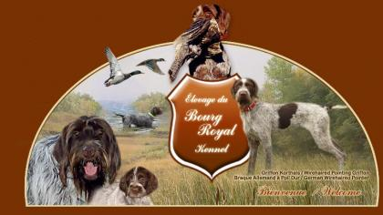BOURG ROYAL KENNEL