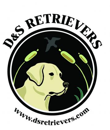 D & S Retrievers