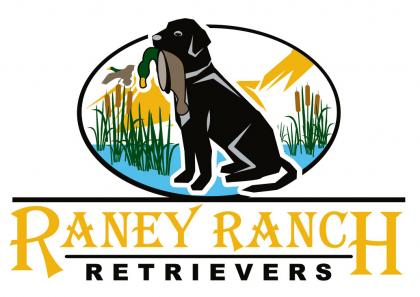 Raney Ranch Retrievers