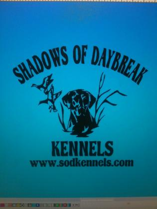 Shadows Of Daybreak Kennels