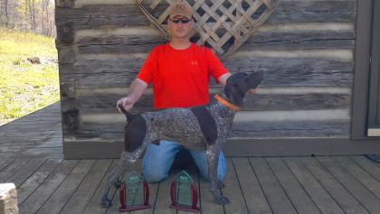 Crown Point Shorthairs