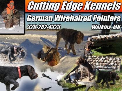 Cutting Edge Kennels