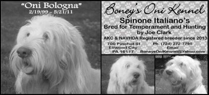 Boney's Oni kennel