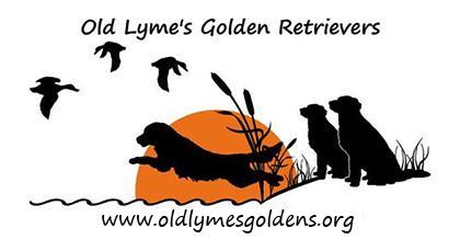 Old Lyme's Golden Retriever Kennel