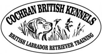 Cochran British Labradors