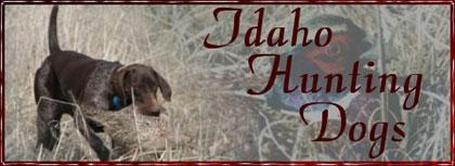 IDAHO HUNTING DOGS