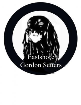 Eastshore Gordon Setters