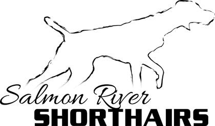 Salmon River Shorthairs