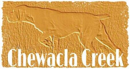 Chewacla Creek GSP