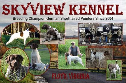 Skyview Kennel