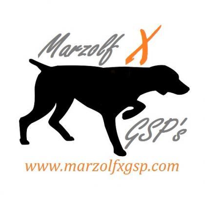 Marzolf X-GSP's
