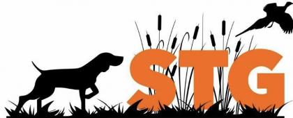 STG hunting dogs