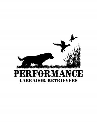 Performance Retrievers