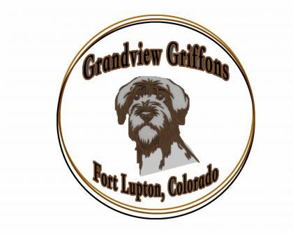 Grandview Griffons