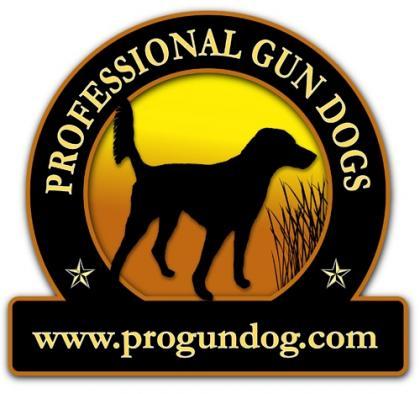 Professional Gun Dogs