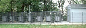 Windcrest Kennels