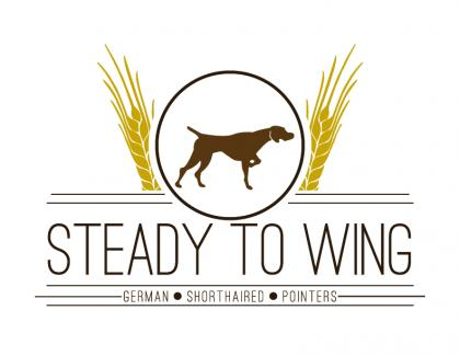 Steady to Wing Shorthairs