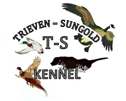 Trieven Sungold Kennels
