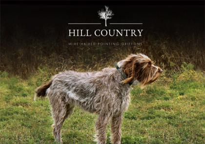Hill Country Wirehaired Pointing Griffons