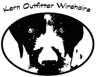 Kern Outfitter Wirehairs