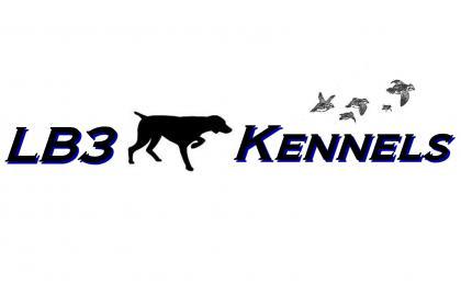 LB3 Kennels