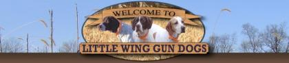 Little Wing Gun Dogs