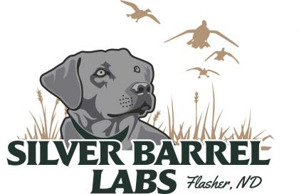 Silver Barrel Labs