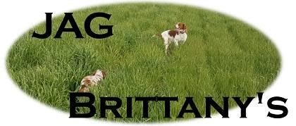 JAG Brittany's
