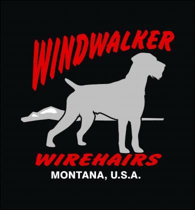 Windwalker Wirehairs