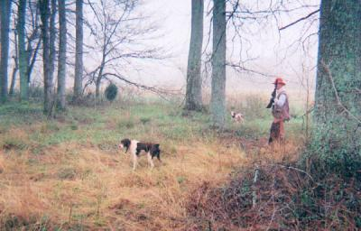 Vick Gamebirds and Hunting Preserve, LLC