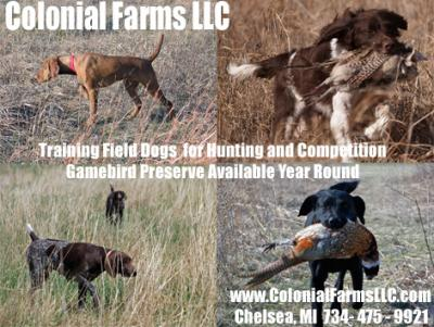 Colonial Farms Gamebird Preserve/Gun Dog Training