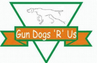 Gun Dogs R Us - Gun Dog Training  and Bird Dogs